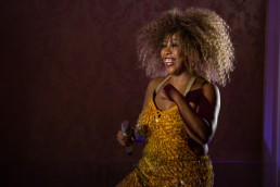 Tina Turner Tribute Showact | seen by streb