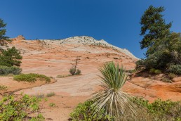 Zion National Park, Utah - seen by streb