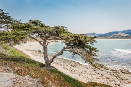 Carmel, Big Sur, California - seen by streb