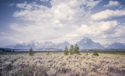 Grand Teton ,Yellowstone National Park - seen by streb